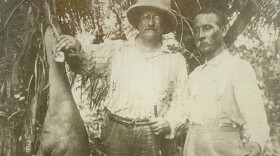 Theodore Roosevelt and Candido Rondon holding up a bush deer, 1914.