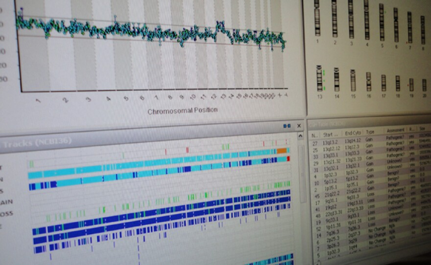 """Close up of computer screen DNA analysis, Genesis, Detroit from """"Cracking Your Genetic Code."""""""