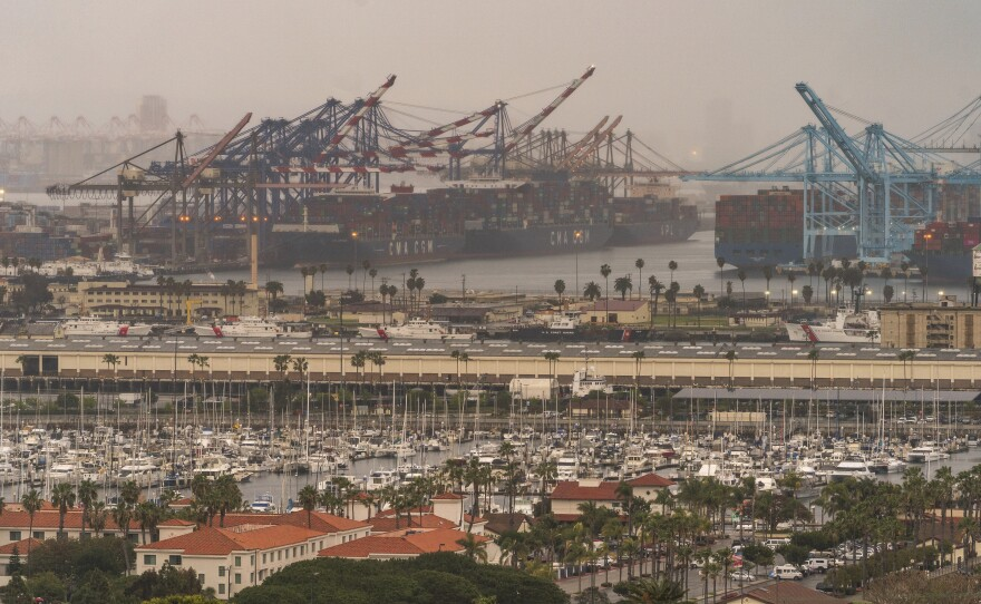 Container cargo ships are seen docked in the Port of Los Angeles, March 3, 2021.