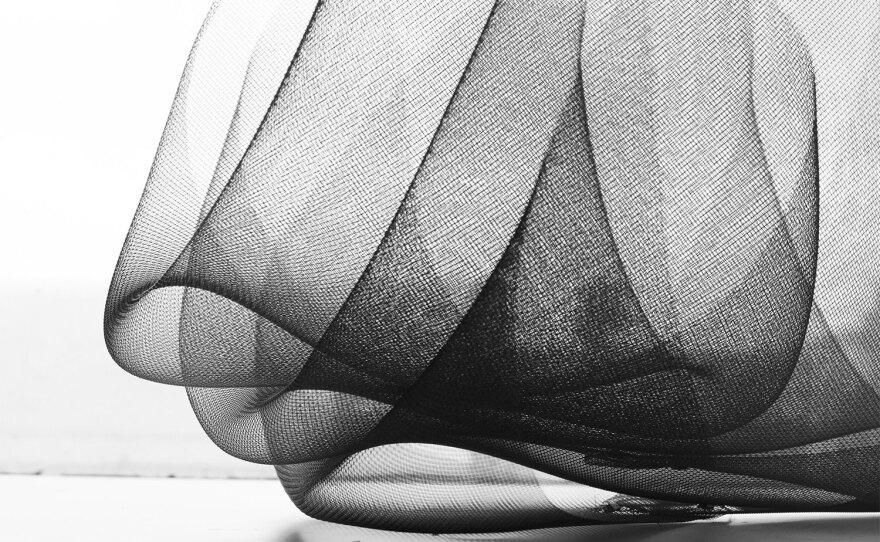 Mesh wire work by artist Jennifer Vargas in an undated photo.