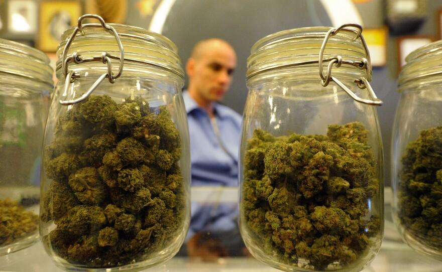 Jars full of medical marijuana are seen at Sunset Junction medical marijuana dispensary on May 11, 2010 in Los Angeles, California.