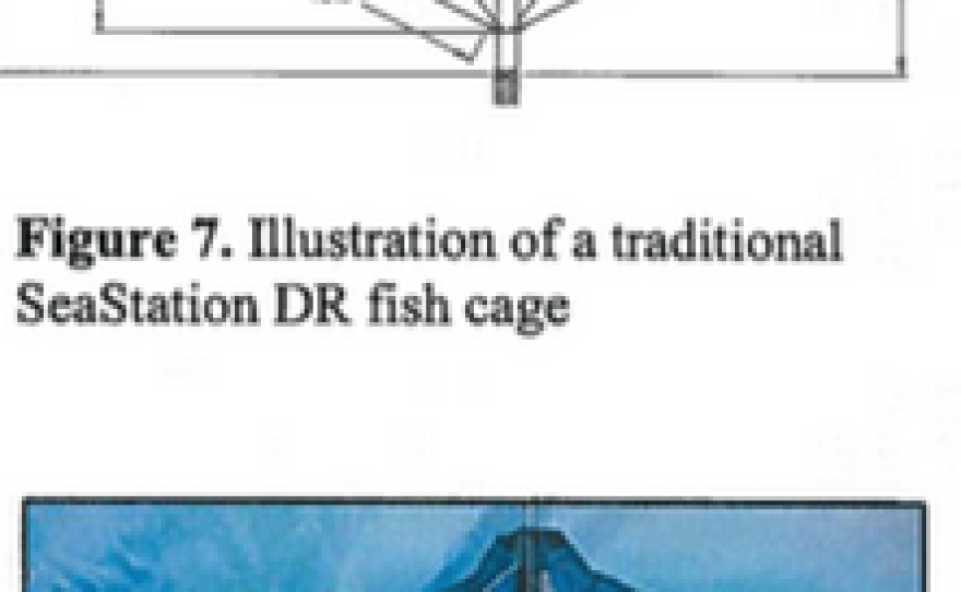 Potential designs of the fish cages in the proposed Rose Canyon Fisheries aquaculture project.