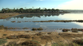 Kendall-Frost reserve is flooded as King tides move in.  The reserve could be expanded to include the Campland on the Bay area in the background on Dec. 5, 2017.