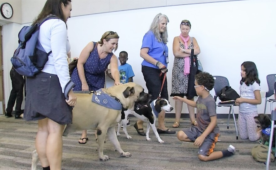 Love on a Leash volunteers Melissa Cantania and Bonnie Biggs bring their therapy dogs Bosley and Zuni to greet children at the Georgina Cole Library in Carlsbad, on Aug. 17, 2016.