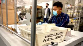 A worker with a face mask and gloves sorts through mail-in ballots at the San Diego County Registrar of Voters in this photo taken Oct. 16, 2020.