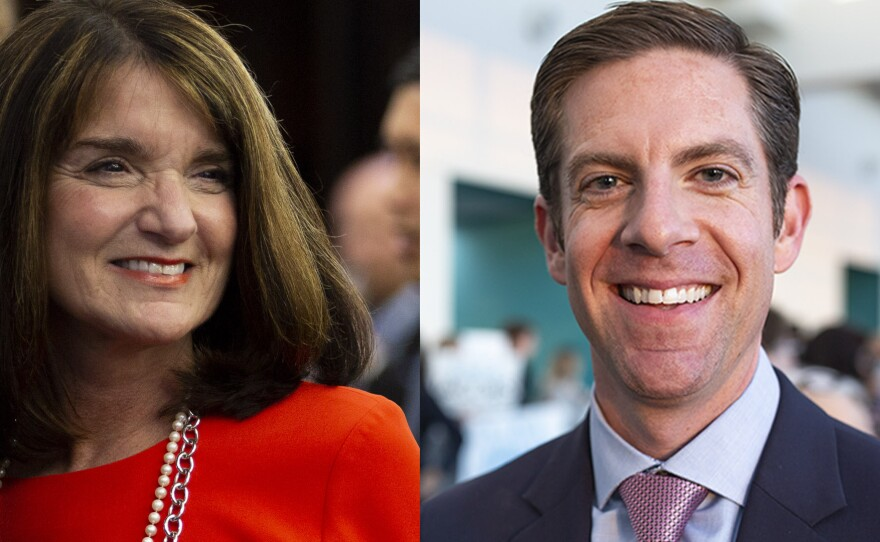 Republican Diane Harkey and Democrat Mike Levin are competing for the 49th Congressional District seat that covers parts of San Diego and Orange counties.