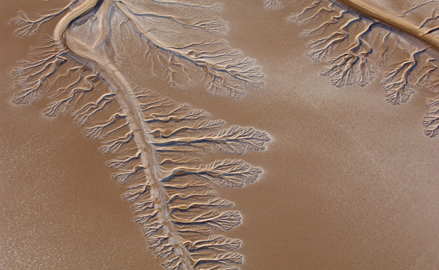 The Colorado River ends in the Sonoran Desert about five miles before the Gulf of California, 2009.