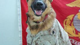 Marine Corps veteran Lucca