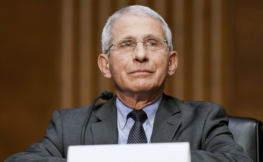 Dr. Anthony Fauci, director of the National Institute of Allergy and Infectious Diseases, testifies during a hearing at the U.S. Capitol earlier this month.