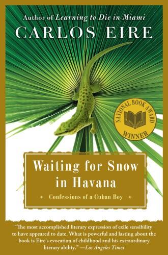 Waiting for Snow in Havana Thumbnail