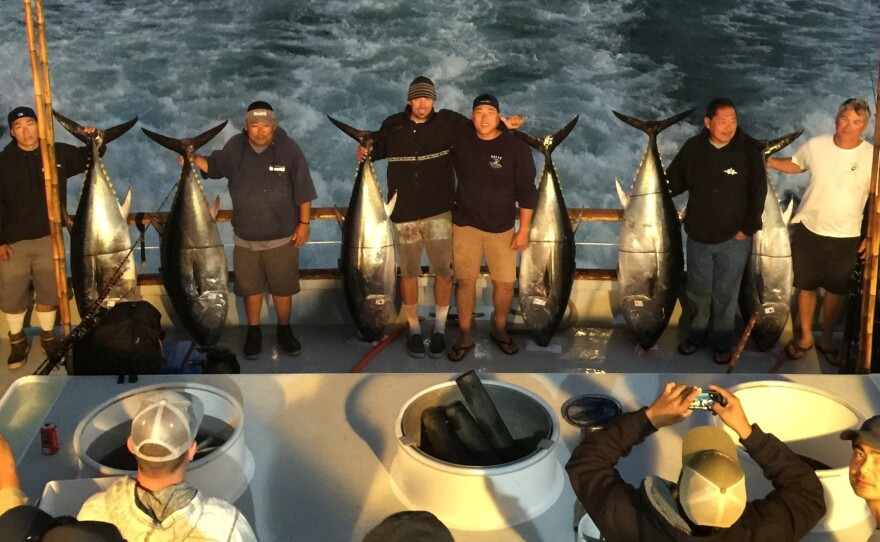 A group of anglers on a Point Loma Sportfishing expedition pose with their bluefin tuna catches, weighing 100 to 200 pounds each, July 29, 2015.