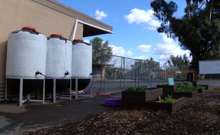 Three barrels each capable of holding 300 gallons make up the new rainwater collection system at Franklin Elementary, Feb. 1, 2016.