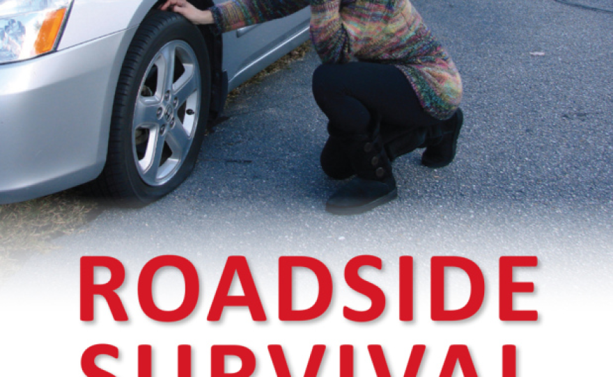 Book: Roadside Survival, by Walt Brinker