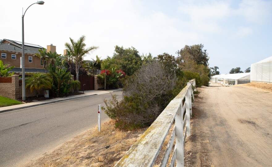 Houses in a neighborhood next to Fox Point Farms in Encinitas are shown on July 13, 2021. Residents have clashed with the operators of a hemp farm on the property.