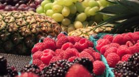 fruit-plumandjello.jpg