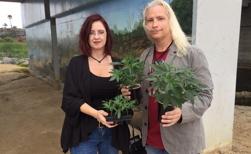 David and Amber Newman, owners of medicinal marijuana grower A Soothing Seed Collectiveare shown in this photo, July 25, 2017.