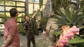 Host Nan Sterman talks with the San Diego Botanic Garden's executive director, Ari Novy, and members of the Garden's professional staff, Tony and John Clements in the Conservatory.