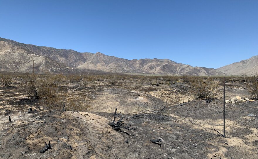 The charred patch of land from the Southern Fire in the Shelter Valley area, May 4, 2021.