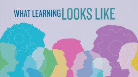 What Learning Looks Like