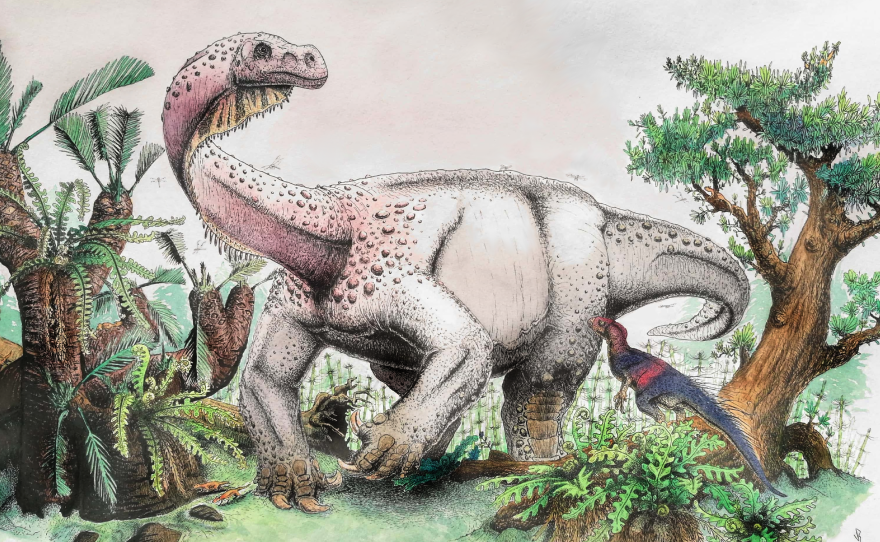 """An artist's reconstruction of Ledumahadi mafube, which means """"a giant thunderclap at dawn,"""" foraging during the early Jurassic in South Africa."""