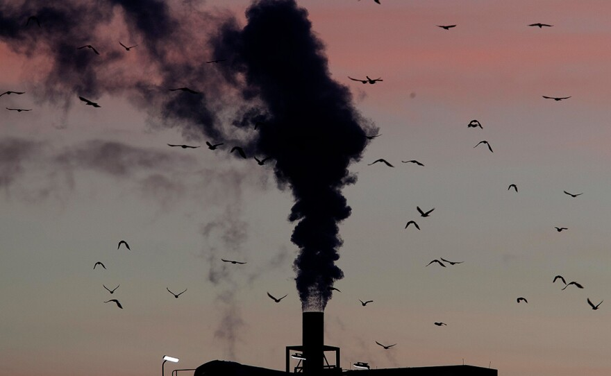 In this Dec. 4, 2018, file photo, birds fly past a smoking chimney in Ludwigshafen, Germany. Development that's led to loss of habitat, climate change, overfishing, pollution and invasive species is causing a biodiversity crisis, scientists say in a new United Nations science report released Monday, May 6, 2019.