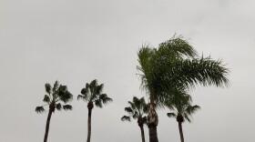 thunderstorm-san-diego-county.jpg
