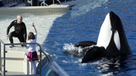 SeaWorld Adventure Park trainer Ken Peters, left, looks to a killer whale during a performance at Shamu Stadium in San Diego, 2006.