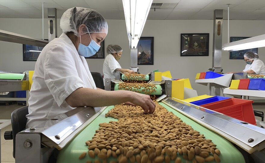 Employees inspect almonds in the processing facility at Steward & Jasper Orchards in Newman, Calif. on July 20, 2021.