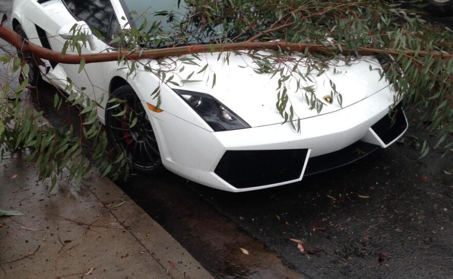 A tree branch lays on top of a Lamborghini on Engineer Road in Kearny Mesa after a winter rainstorm swept through San Diego, Feb. 28, 2014.