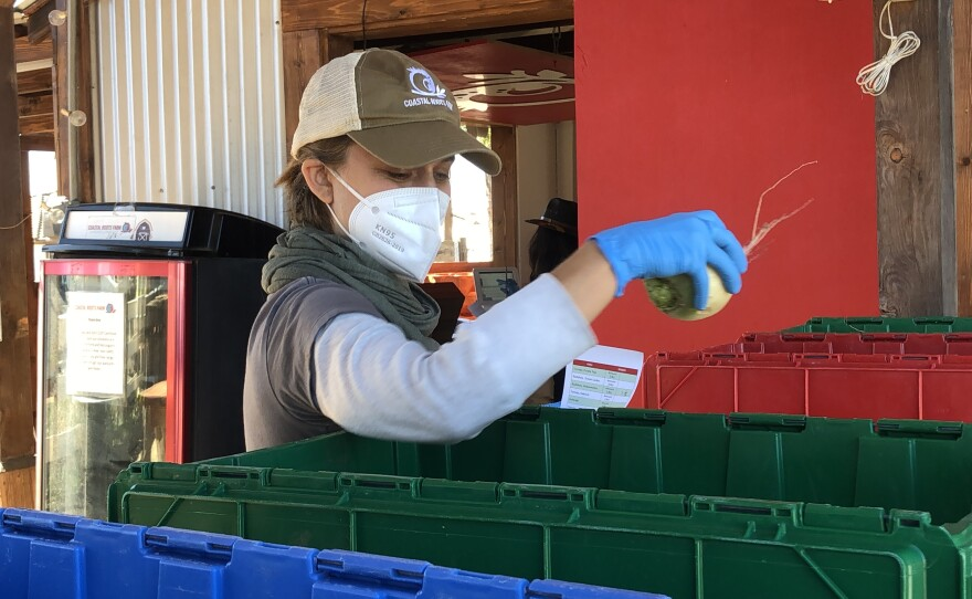 A Coastal Roots Farm worker moves vegetables into different boxes, Feb. 19, 2021.