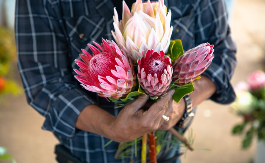 Owner Mel Resendiz puts together a bouquet of flowers at the Resendiz Brothers Protea Growers nursery in Fallbrook, June 17, 2020.