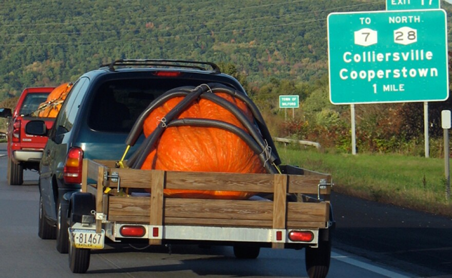A contender en route to Cooperstown's giant pumpkin weigh-off.