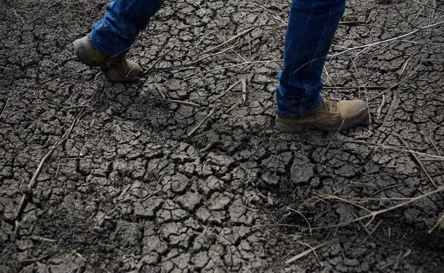 Fourth-generation rice farmer Josh Sheppard walks across the dried-up ditch at his rice farm in Richvale, Calif., May 1, 2014.