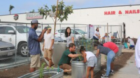 Sam Tall (center), from City Farmers Nursery, helps children set up planters for Eat San Diego's free food park in City Heights on July 29, 2017. The park is on El Cajon Boulevard and Central Avenue.