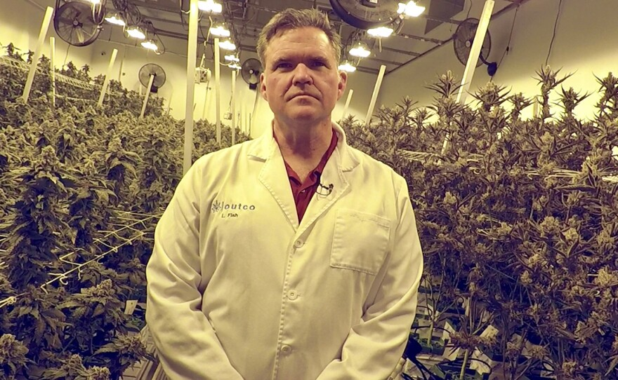 OutCo Labs CEO Lincoln Fish stands inside a room where his company grows cannabis — high-pressure sodium lights give the room a yellow tint, May 9, 2019.