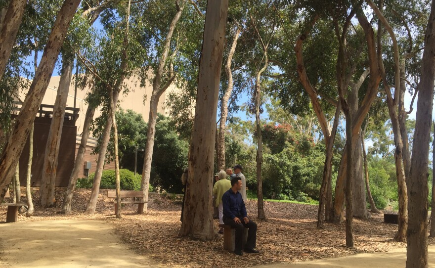 The opening of the audio installation The Wind Garden in the grove next to the Mandell Weiss Theatre on the UC San Diego campus. Aug. 7, 2017.