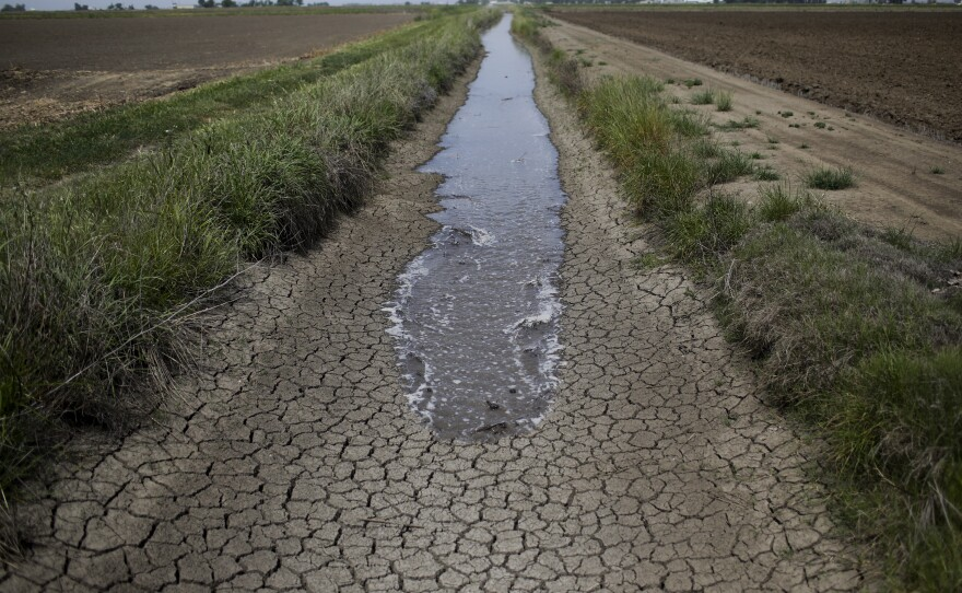 Irrigation water runs along the dried-up ditch between the rice farms to provide water for the rice fields in Richvale, Calif., May 1, 2014.