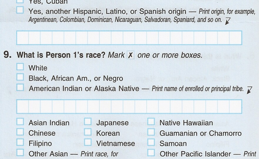 Questions eight and nine from the 2010 Census regarding Hispanic origin and race.