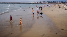 People and their pets walk along the sand at Dog Beach in Ocean Beach, Sept. 6, 2021.