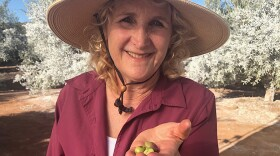 Join A GROWING PASSION host and garden expert, Nan Sterman (pictured), as she explores farms, vineyards, gardens, native habitats and more throughout California and the West.