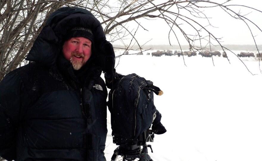 Filmmaker Jeff Turner filming buffalo in winter.