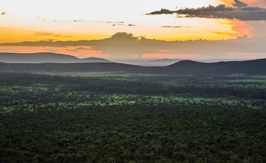 The Olarro Conservancy in the Maasai Mara Reserve in Kenya is shown in this photograph from May 15, 2015.