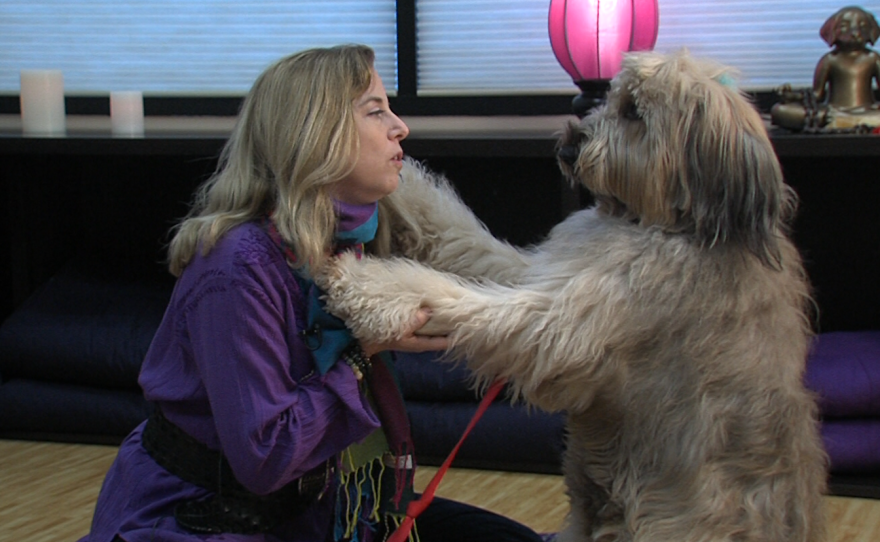 Julie Potiker and her briard, Madeline, during a Wellbeing for Dogs + Their Humans class, Feb. 22, 2017.