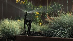 A water-efficient sprinkler sprays plants in a Chula Vista yard in this undated photograph.