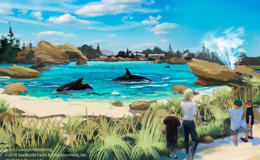 An artist rendering of the planned expansion of SeaWorld's killer whale habitat.