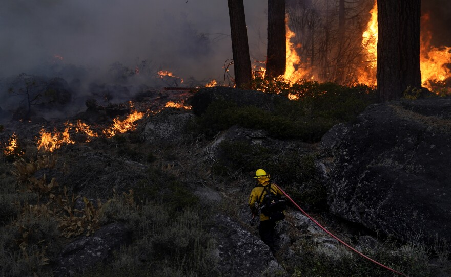 A firefighter carries a water hose toward a spot fire from the Caldor Fire burning along Highway 89 near South Lake Tahoe, Calif., Sept. 2, 2021.